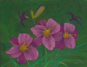 solo exhibit event - Pink Whispers, Pastel, © 2015 Anne S. Katzeff