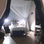 Moholoholo room.