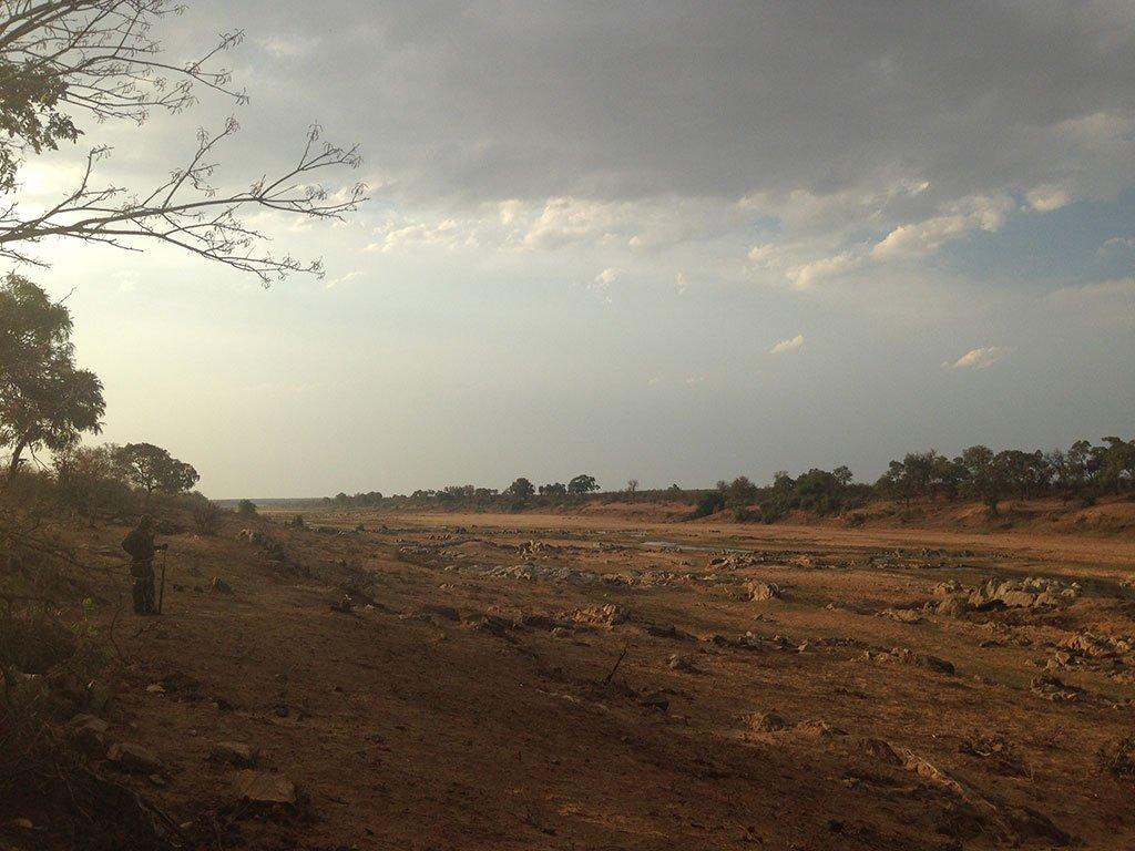 Afternoon on Letaba River, Kruger Park, South Africa