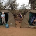 Our dome tents in Malompheni, a remote wild camping area of Krugar Park, SA.
