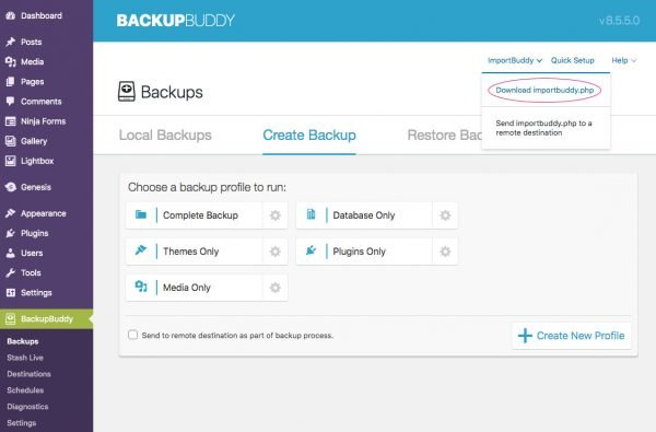 Backup Buddy download importbuddy screen