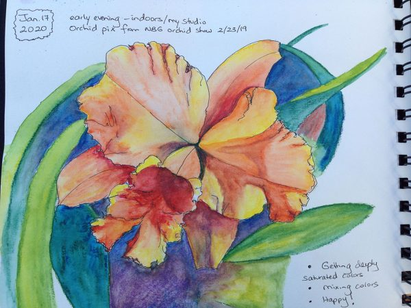 Watercolors: orange orchid with fluffy petals