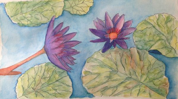 Watercolors: Lily pond flowers version 2