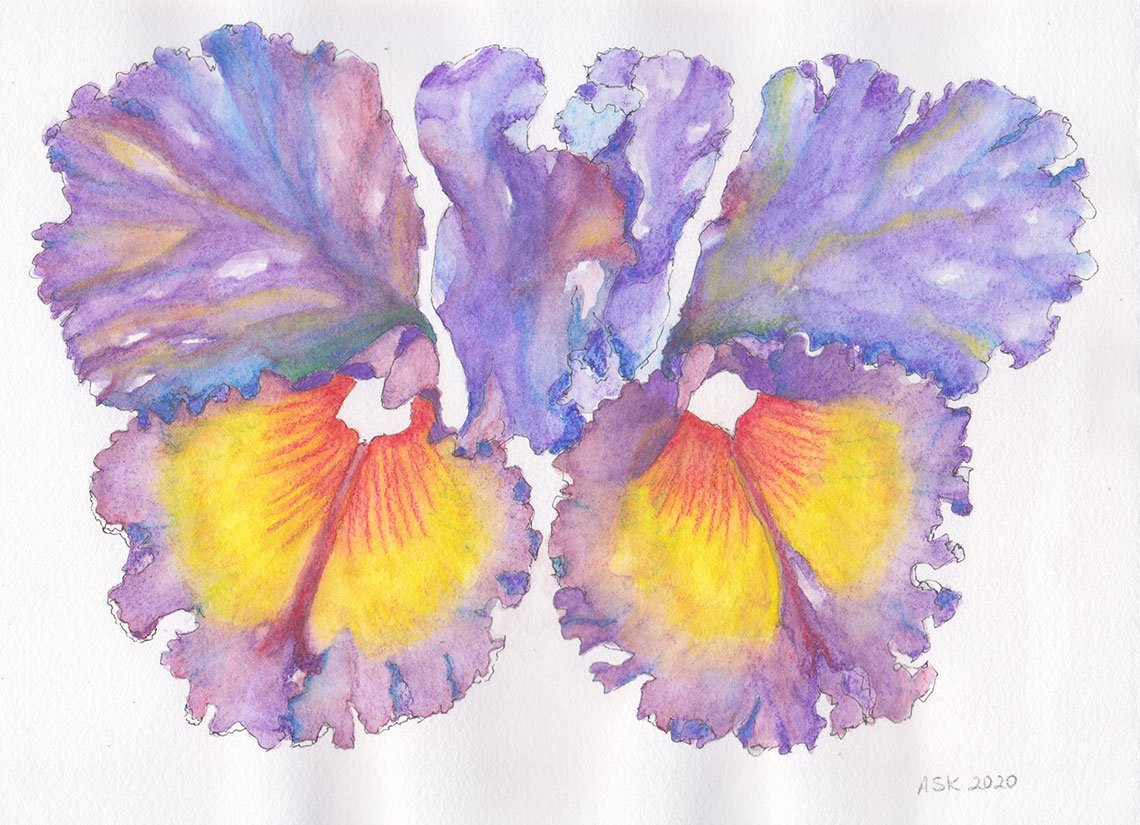 Watercolors: Orchid Valentine