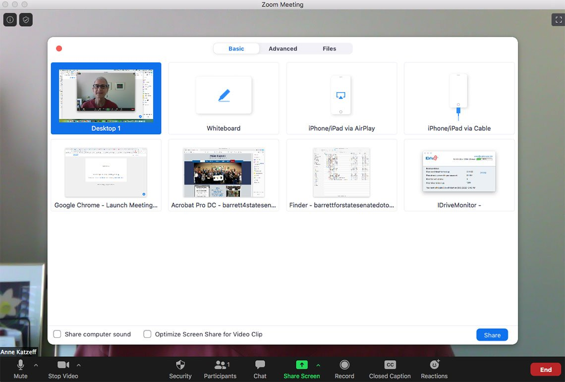 share-screen video conferencing