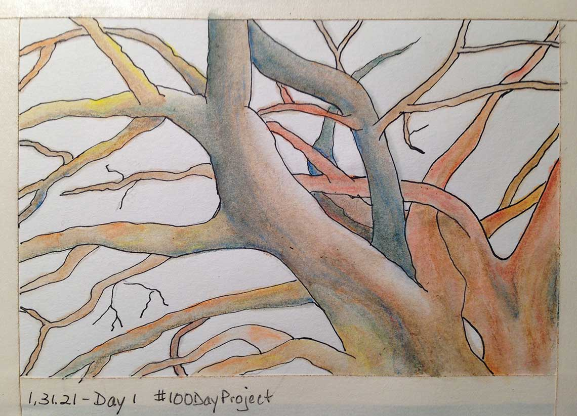 100DayProject - day 1 of art challenge - bare branches of trees