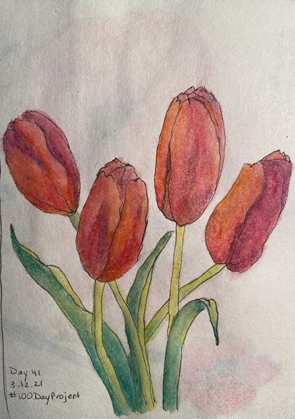 100DayProject - day 41 - tulips