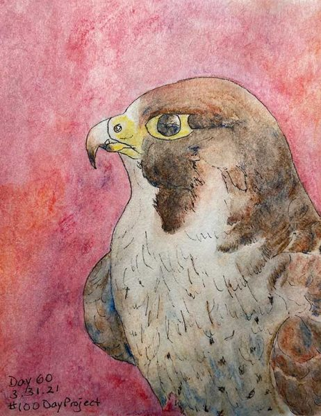 100DayProject - day 60 of art challenge - eagle