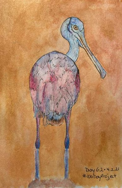 100DayProject - day 62 of art challenge - roseatte spoonbill