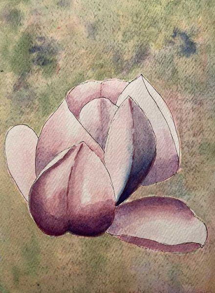 100DayProject - day 70 - floating magnolia painting in art challenge