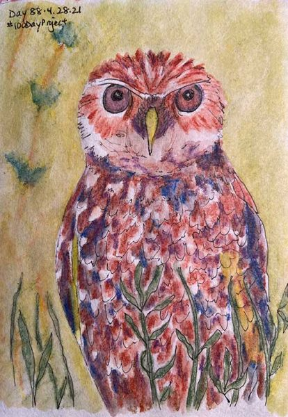 100DayProject - day 88 - burrowing owl