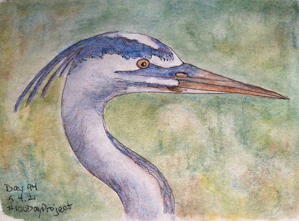 100DayProject - day 94 of art challenge - Great Blue Heron