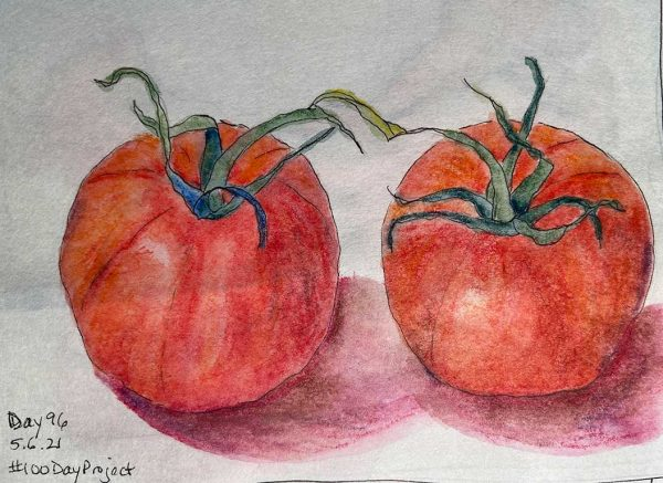 100DayProject - day 96 of art challenge - pair of tomatoes