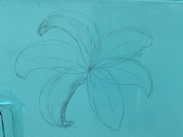 Sketch of lilies